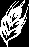 DFW logo white